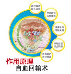 自血回输术作用原理
